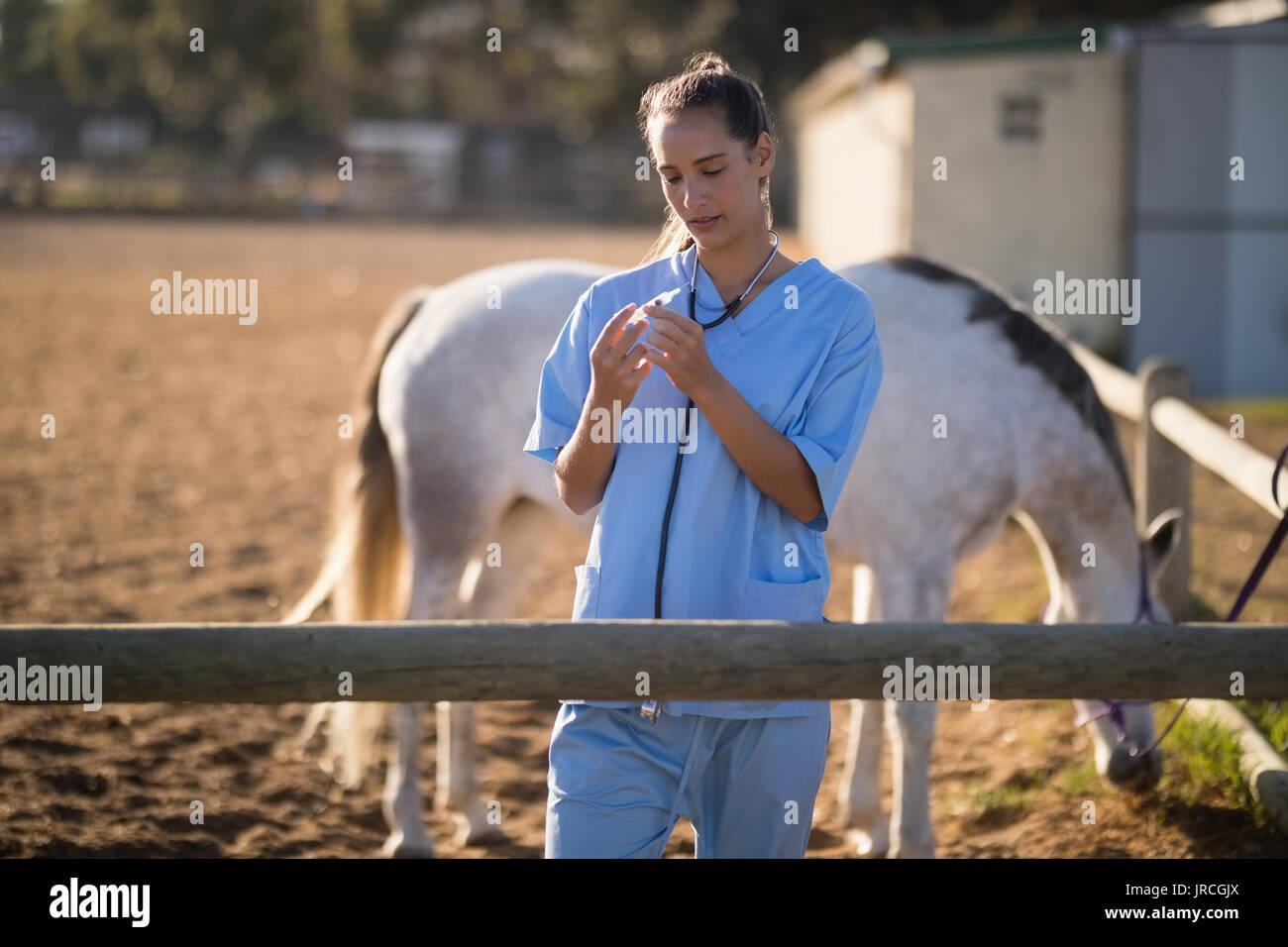 Female vet examining syringe at barn - Stock Image