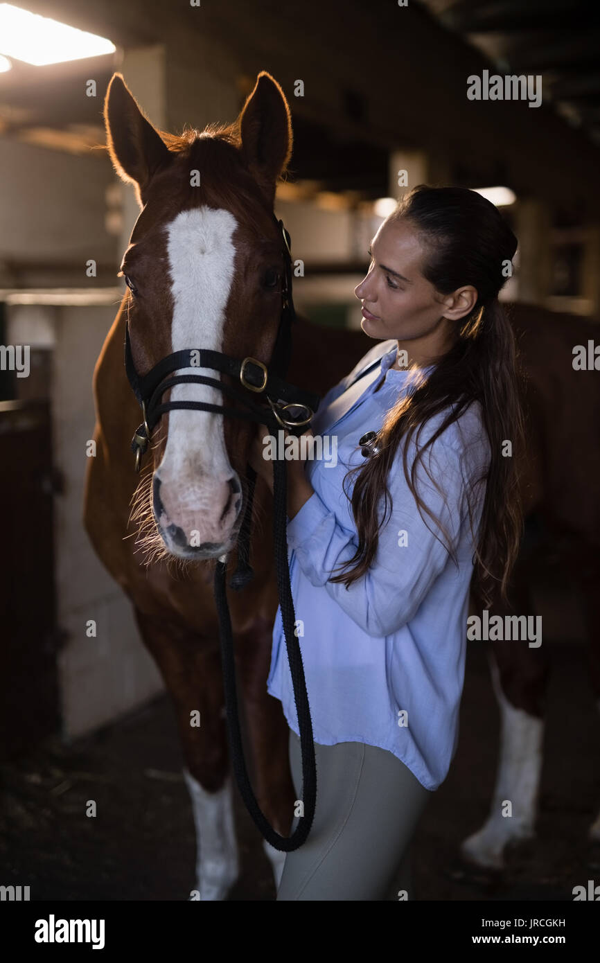 Female vet examining brown horse at stable - Stock Image