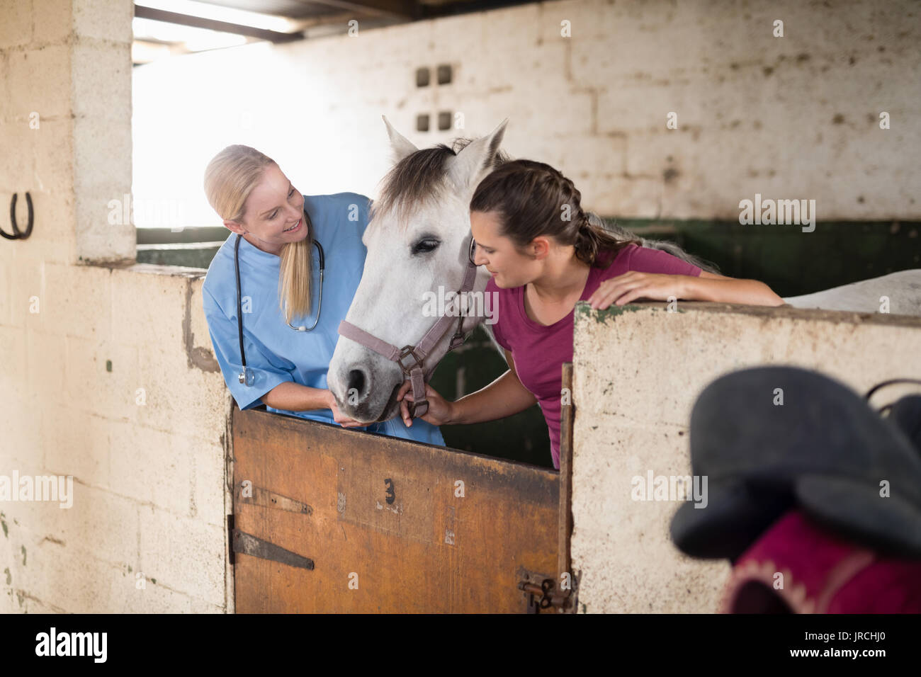 Female vet with woman looking at horse while standing in stable - Stock Image