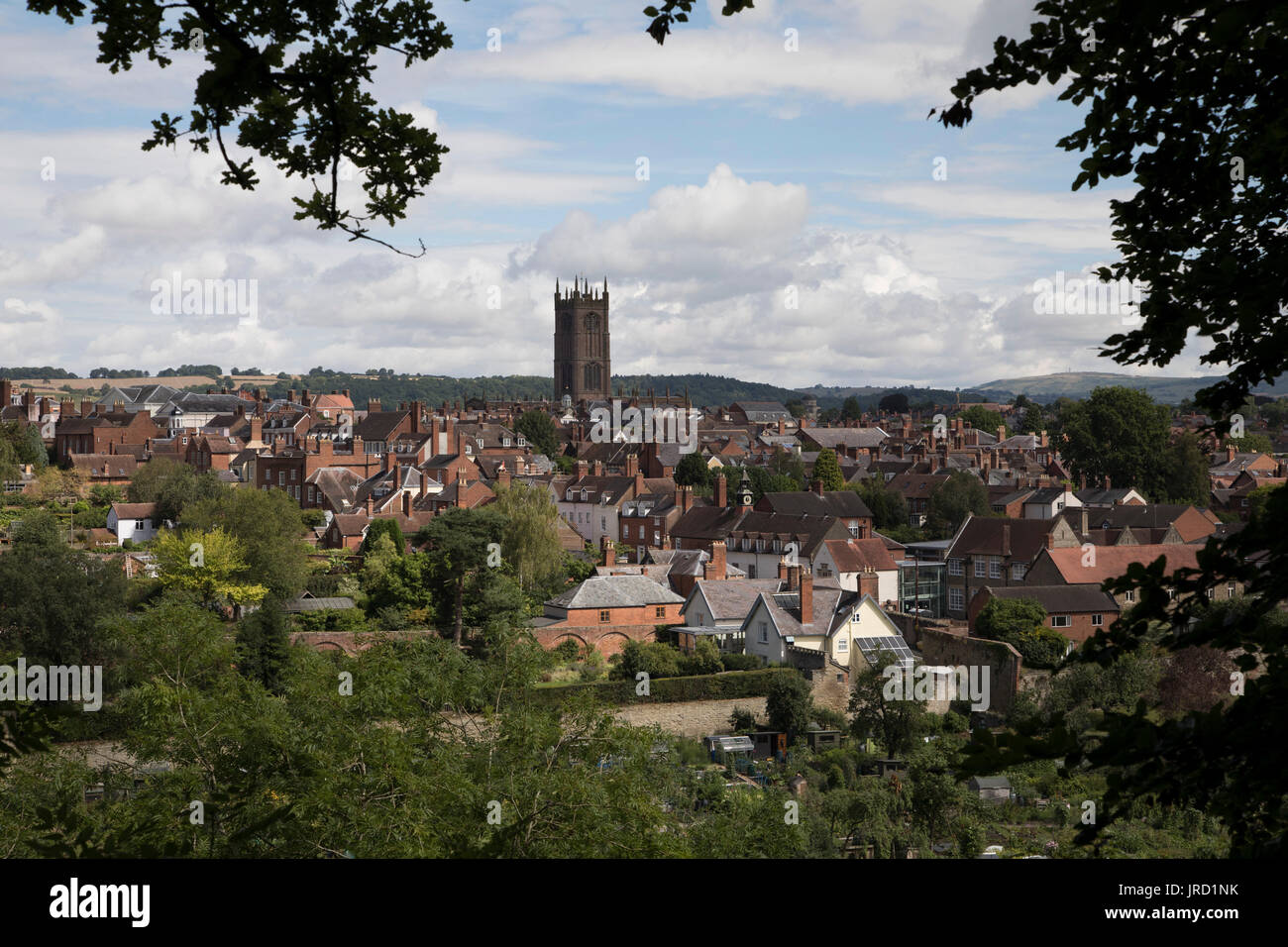 View towards the town of Ludlow and the parish church of St Laurences. Ludlow is a market town in Shropshire, England. With a population of approximately 11,000, Ludlow is the largest town in south Shropshire. The town is near the confluence of two rivers. The oldest part is the medieval walled town, founded in the late 11th century after the Norman conquest of England. It is centred on a small hill which lies on the eastern bank of a bend of the River Teme. Atop this hill is Ludlow Castle and the parish church, St Laurences, the largest in the county. From there the streets slope downward to  - Stock Image