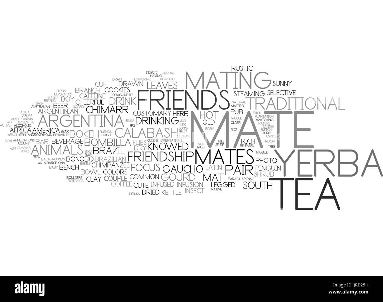mates word cloud concept - Stock Vector