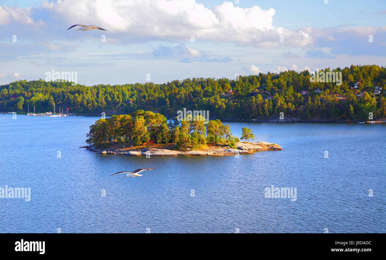 Panoramic view of the small islands in the archipelago of Stockholm. Sweden. Water landscape - Stock Image
