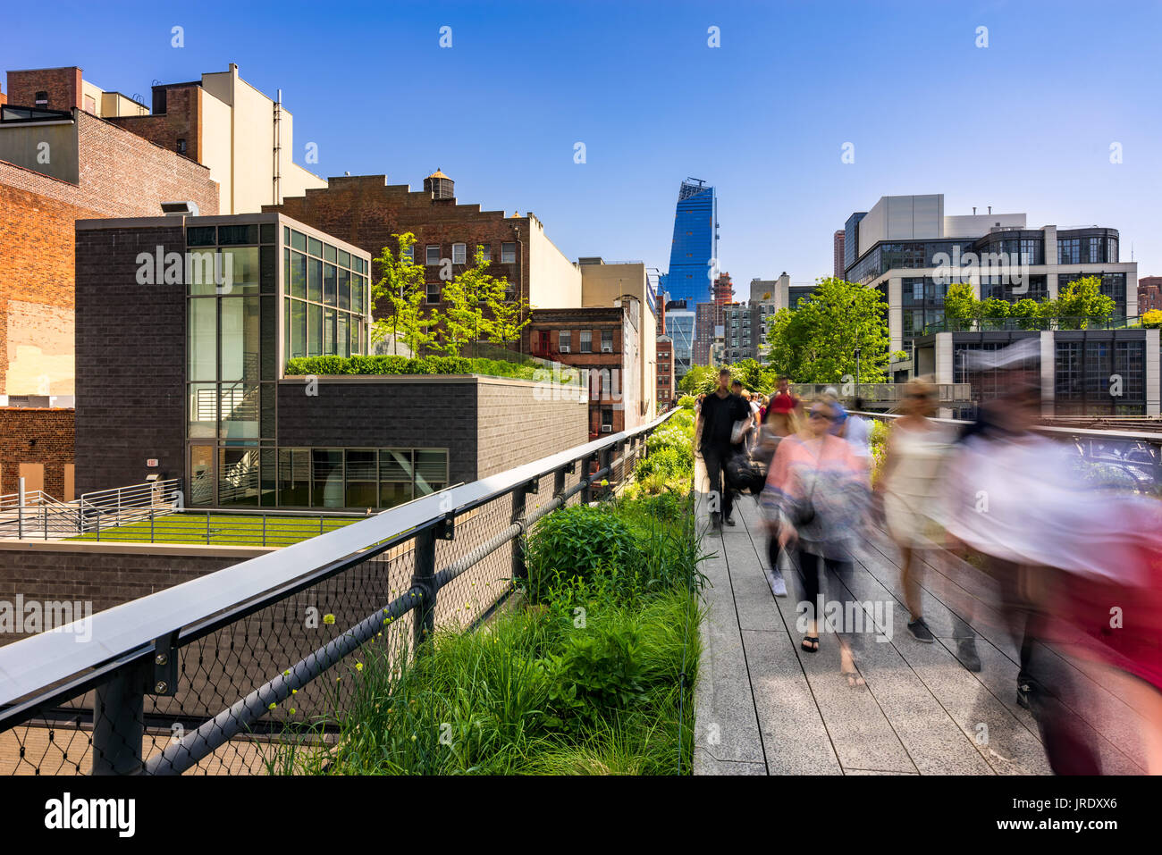 Morning on the The High Line, Chelsea, Manhattan, New York City - Stock Image