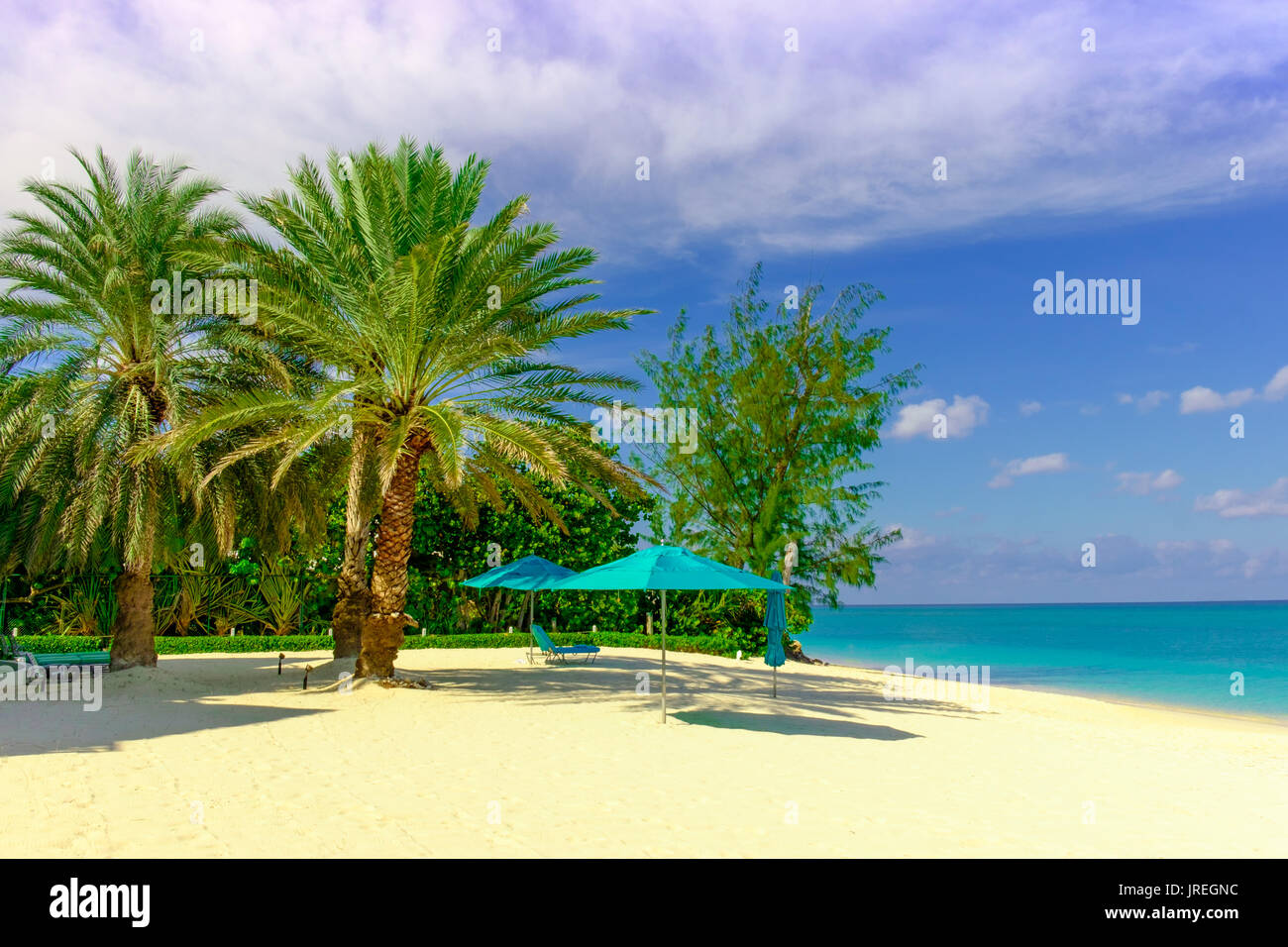 Parasols and palm trees on Seven Mile Beach in the Caribbean, Grand Cayman, Cayman Islands - Stock Image