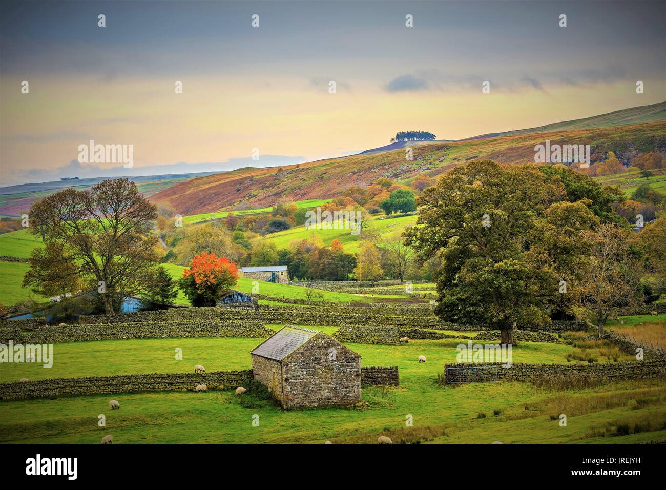 View of Kirk Carrion from Holwick. - Stock Image
