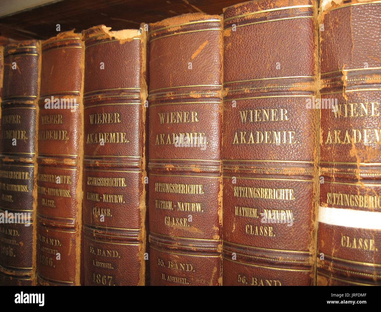 Multiple worn, leather bound books in a row on a bookshelf in a special collection library, damage to the leather spines visible, gold lettering on each book in German, 1900. - Stock Image