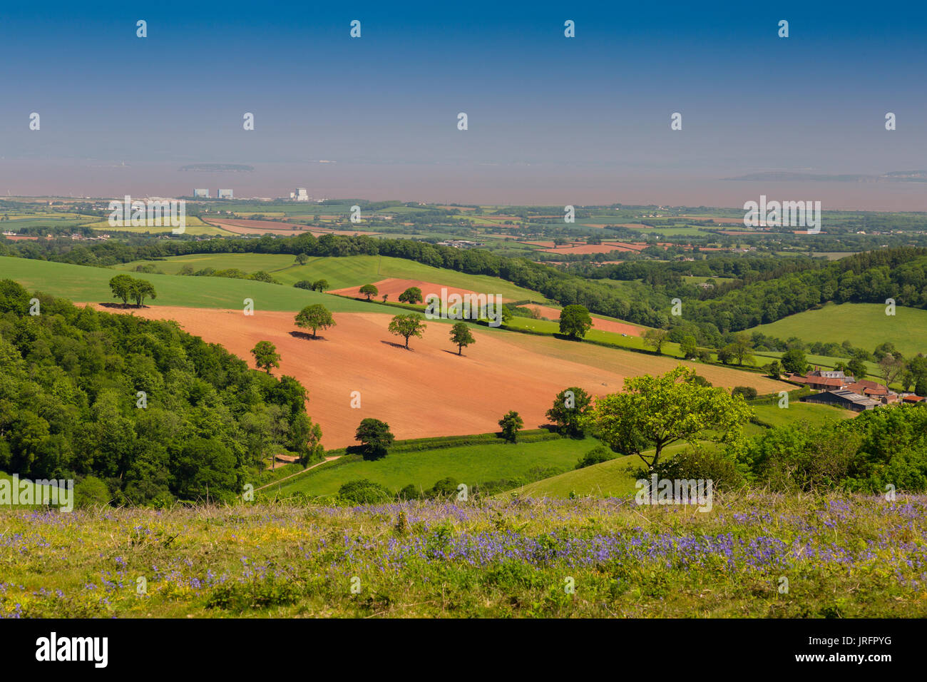 Looking north from the summit of Cothelstone Hill on the Quantock Hills towards Hinkley Point and the Bristol Channel, Stock Photo