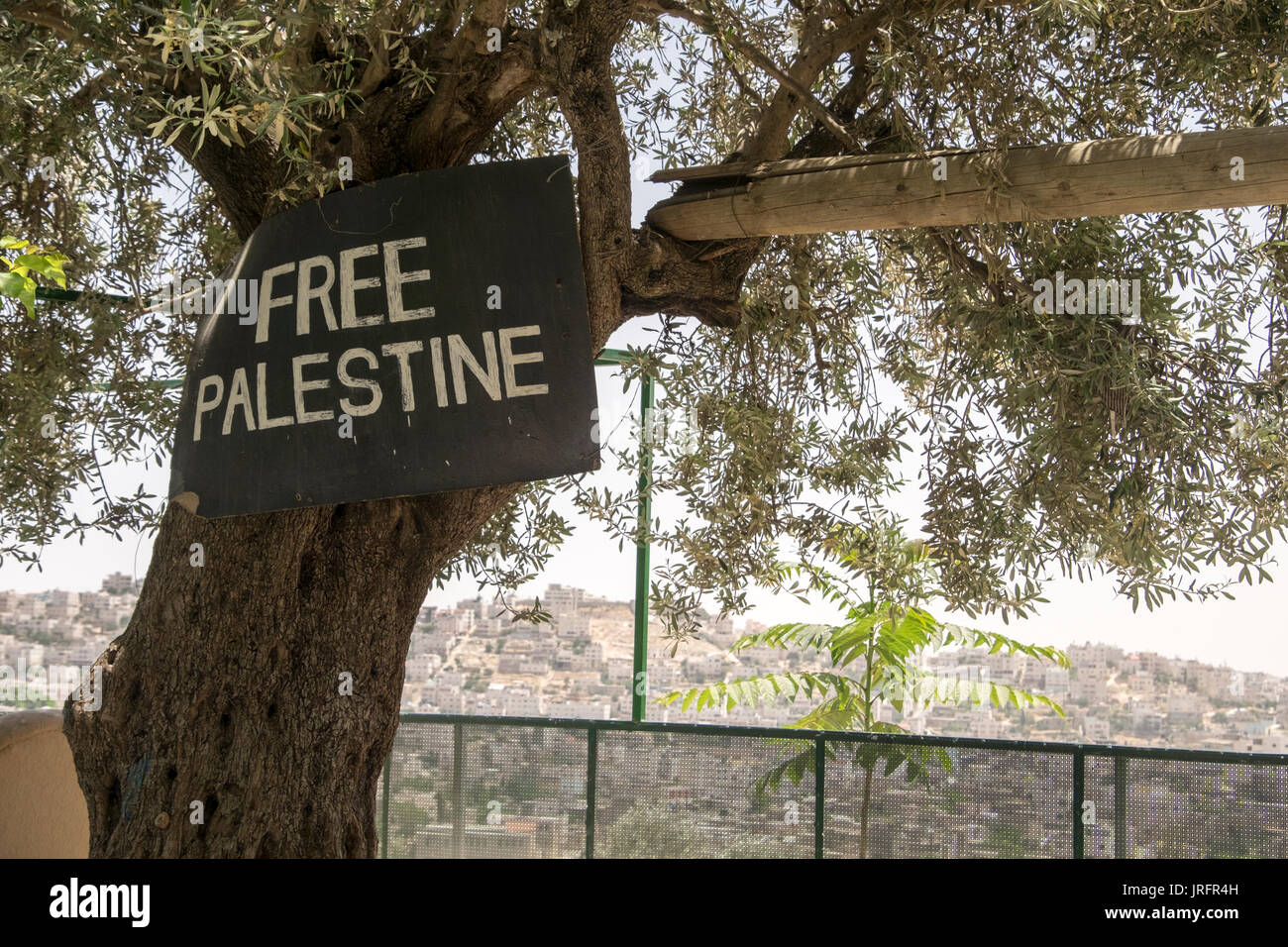A view of the center of the conflicted city of Hebron as seen from a Palestinian neighborhood overlooking it with a Free Palestine sign on a tree - Stock Image