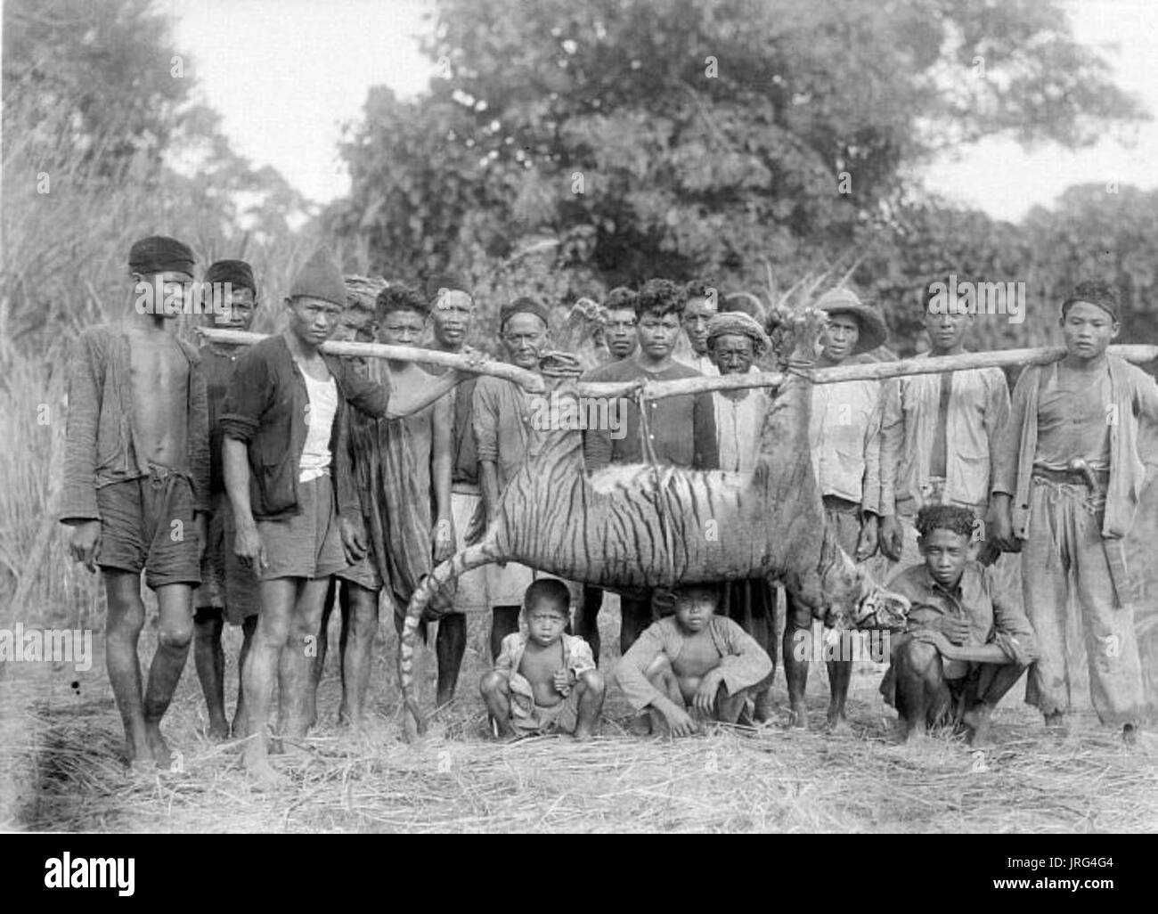 A hunting party poses with a killed Javan tiger, 1941 Stock Photo
