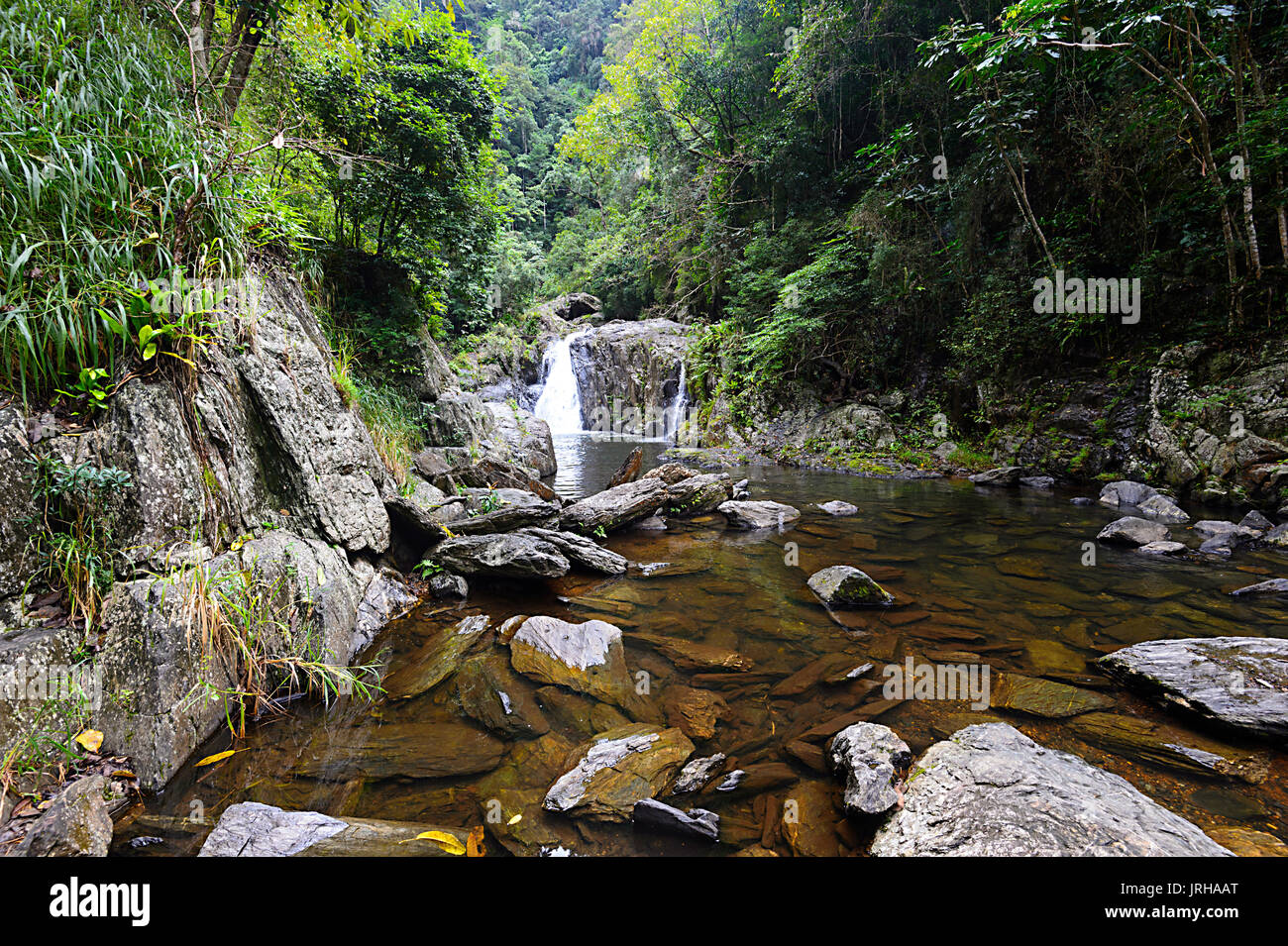 Crystal Cascades, Cairns, Far North Queensland, FNQ, QLD, Australia - Stock Image