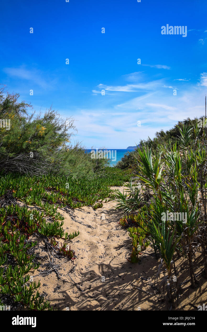 Looking through the sand dunes towards the turquoise Atlantic Ocean in Porto Santo, Portugal - Stock Image