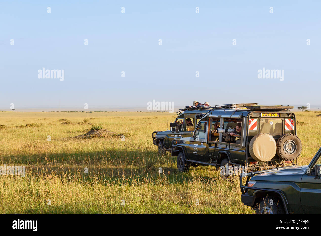 Photographers with telephoto lenses in safari vehicles on the African savannah - Stock Image
