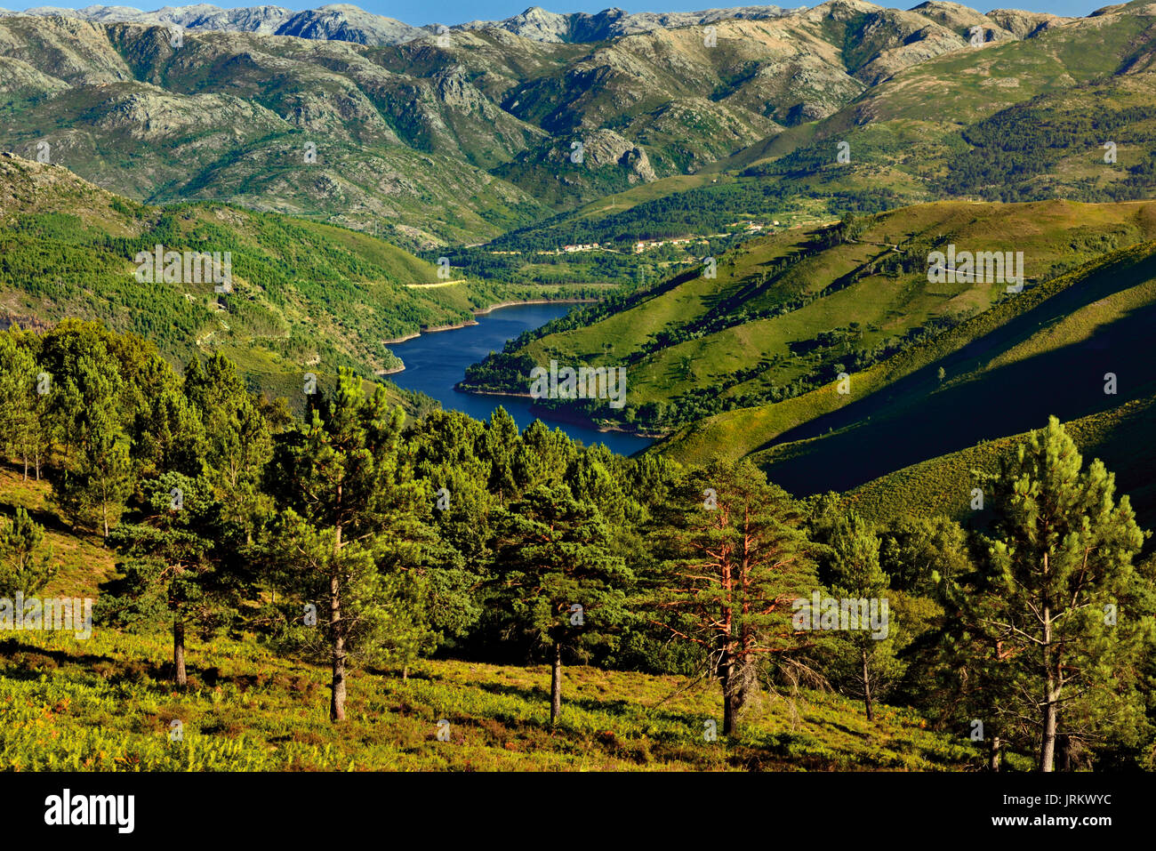Landscape view with mountains, green hills and a barrage surroundet by pine trees - Stock Image