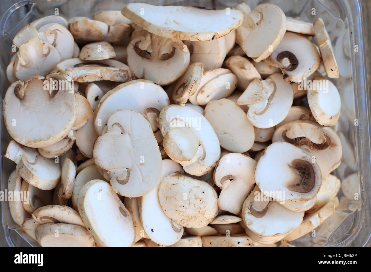 Close up of Sliced Agaricus bisporus or known as White Button Mushrooms Stock Photo