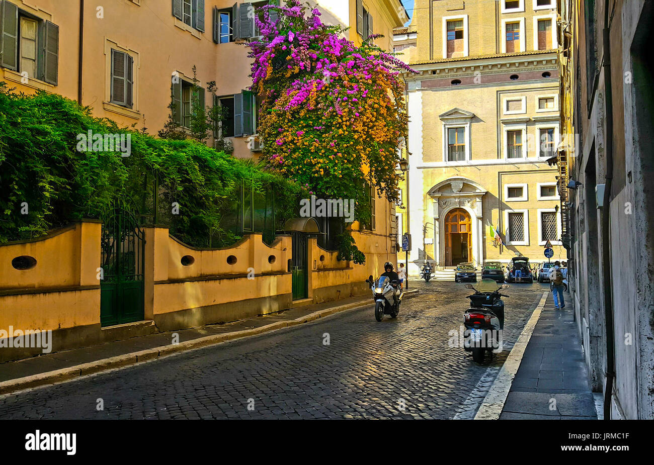 Back street in Rome with a colorful bougainvillea plant with pink and orange flowers on the side of a building with a motorcycle and a solo traveler - Stock Image