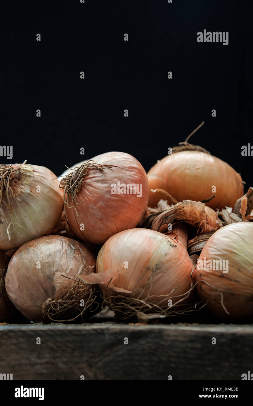 Rustic onions - Stock Image