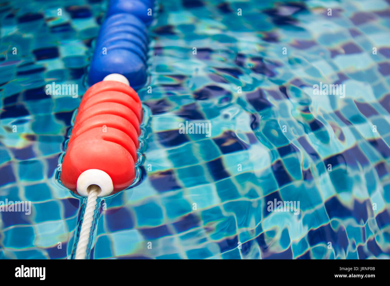 Blue and red colors plastic swimming pool lane divider and rope floating on water surface - Stock Image