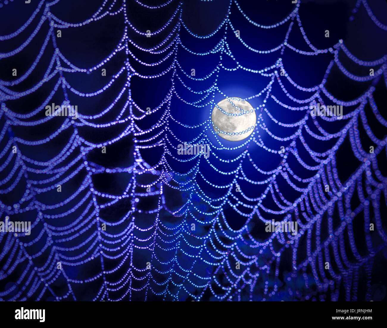 Photo Illustration of the moon and spider web - Stock Image