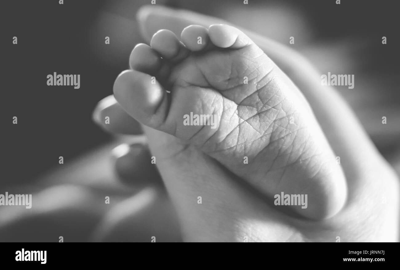 Adult woman holding baby's foot Stock Photo