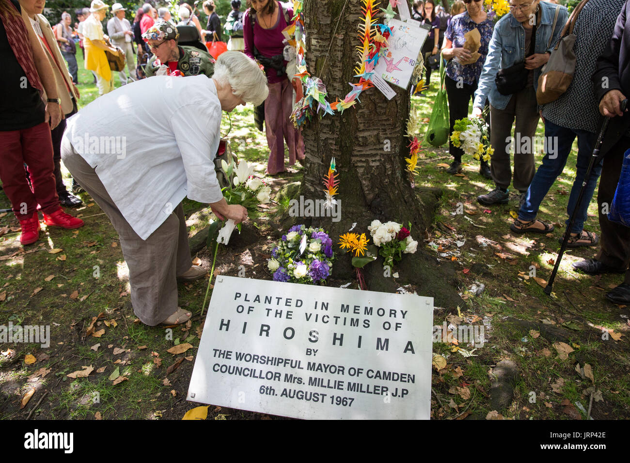 London, UK. 6th August, 2017. Carol Turner, Vice-Chair of the Campaign for Nuclear Disarmament (CND), lays flowers next to the commemorative Hiroshima cherry tree at the end of the annual Hiroshima Day anniversary event in Tavistock Square. Credit: Mark Kerrison/Alamy Live News - Stock Image
