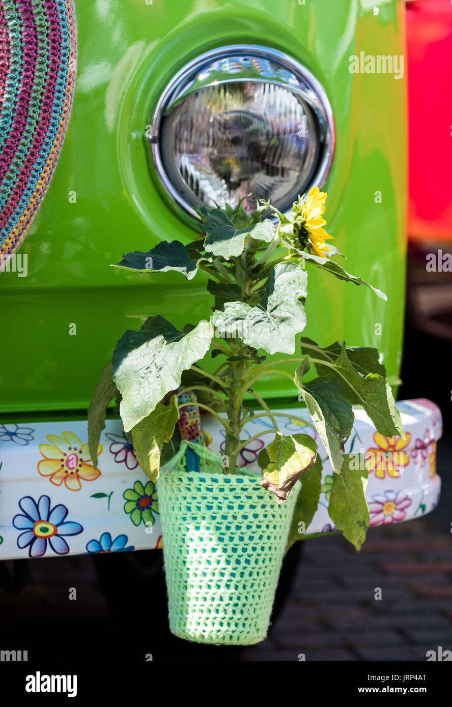 Stocken, Germany. 06th Aug, 2017. A flower hangs from the headlight of an old VW Kombi in the grounds of the Volkswagen Commercial Vehicles Plant during the Kombi Meet on the occasion of the 70th anniversary of the Volkswagen Transporter in Stocken, Germany, 06 August 2017. Photo: Peter Steffen/dpa/Alamy Live News - Stock Image