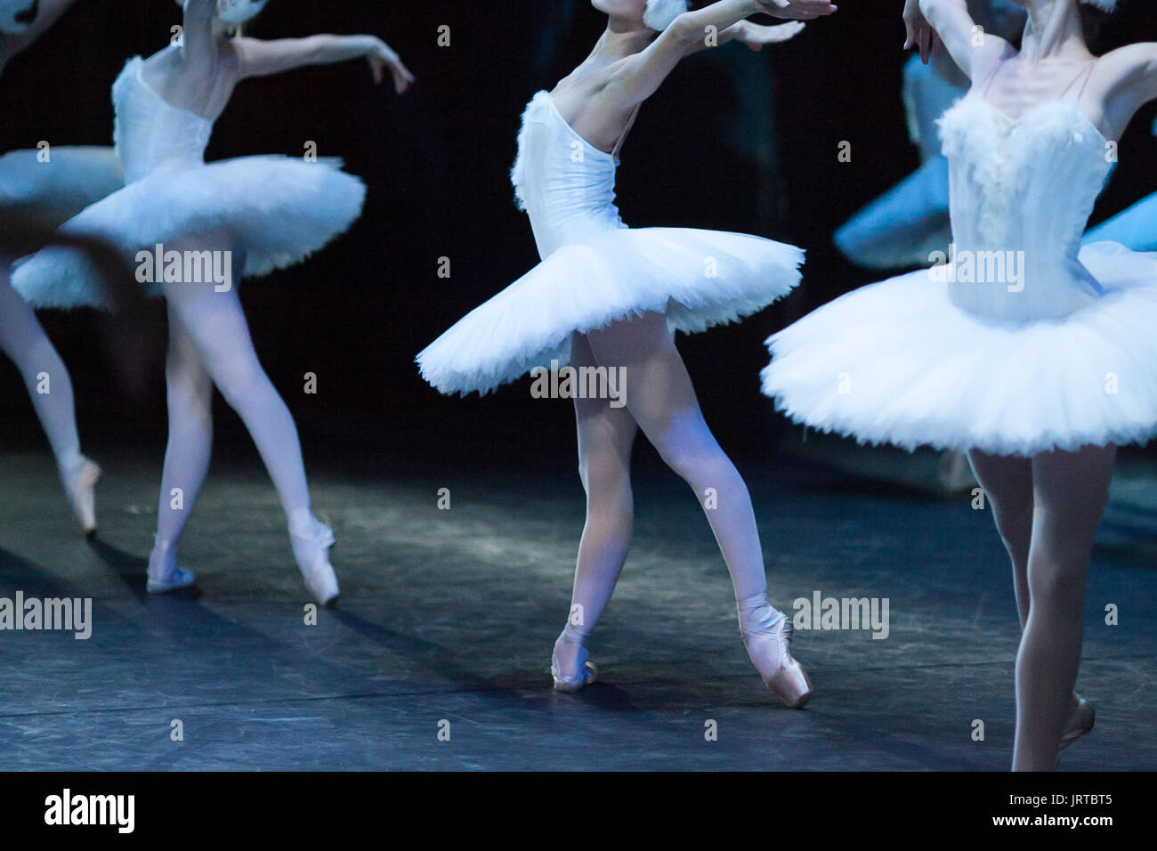 culture, tradition, choreography concept. sylph like, slender and graceful, ravishing female ballet dancers dressed in wonderful garbs decorated with white feathers - Stock Image