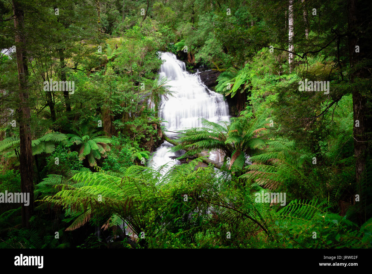 Triplet Falls in Otways National Park, Victoria. - Stock Image