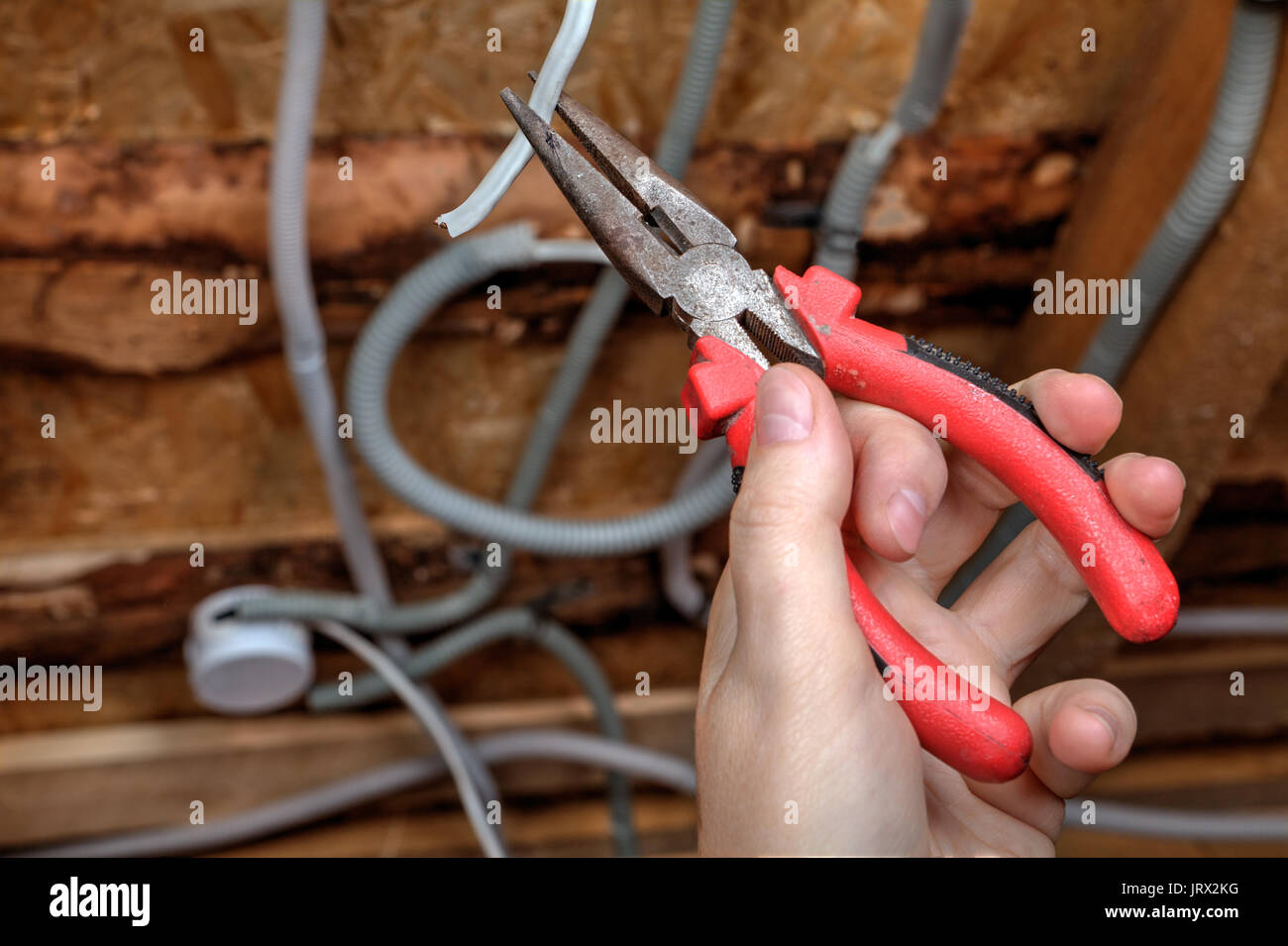 Electrician Wiring Light Switch Stock Photos A Ceiling Rose Installing Mounter Hand With Pliers Close Up Image