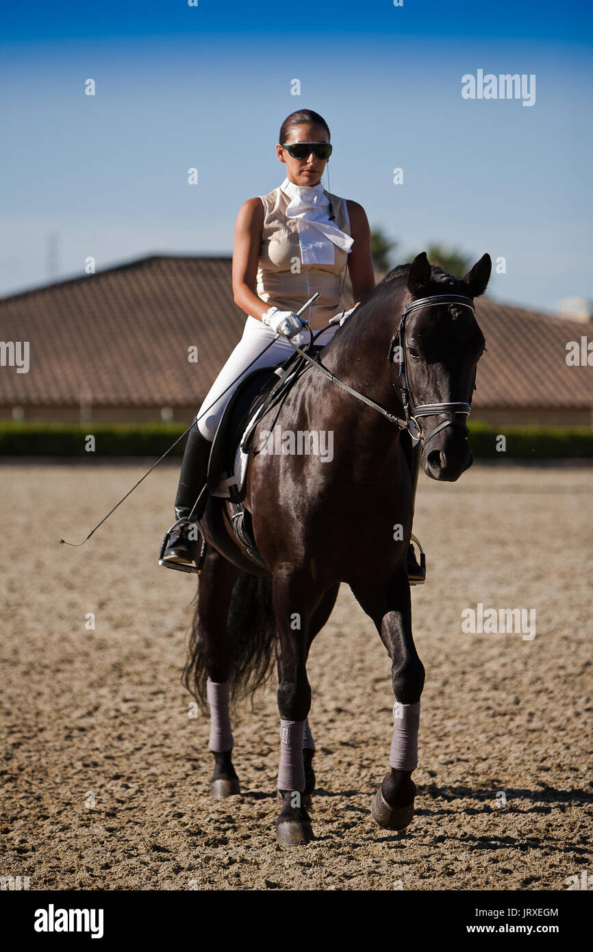 Beautiful Amazon training during an exercise of equestrian morphology of horses of pure Spanish race in Estepona, Malaga province, Andalusia, Spain - Stock Image