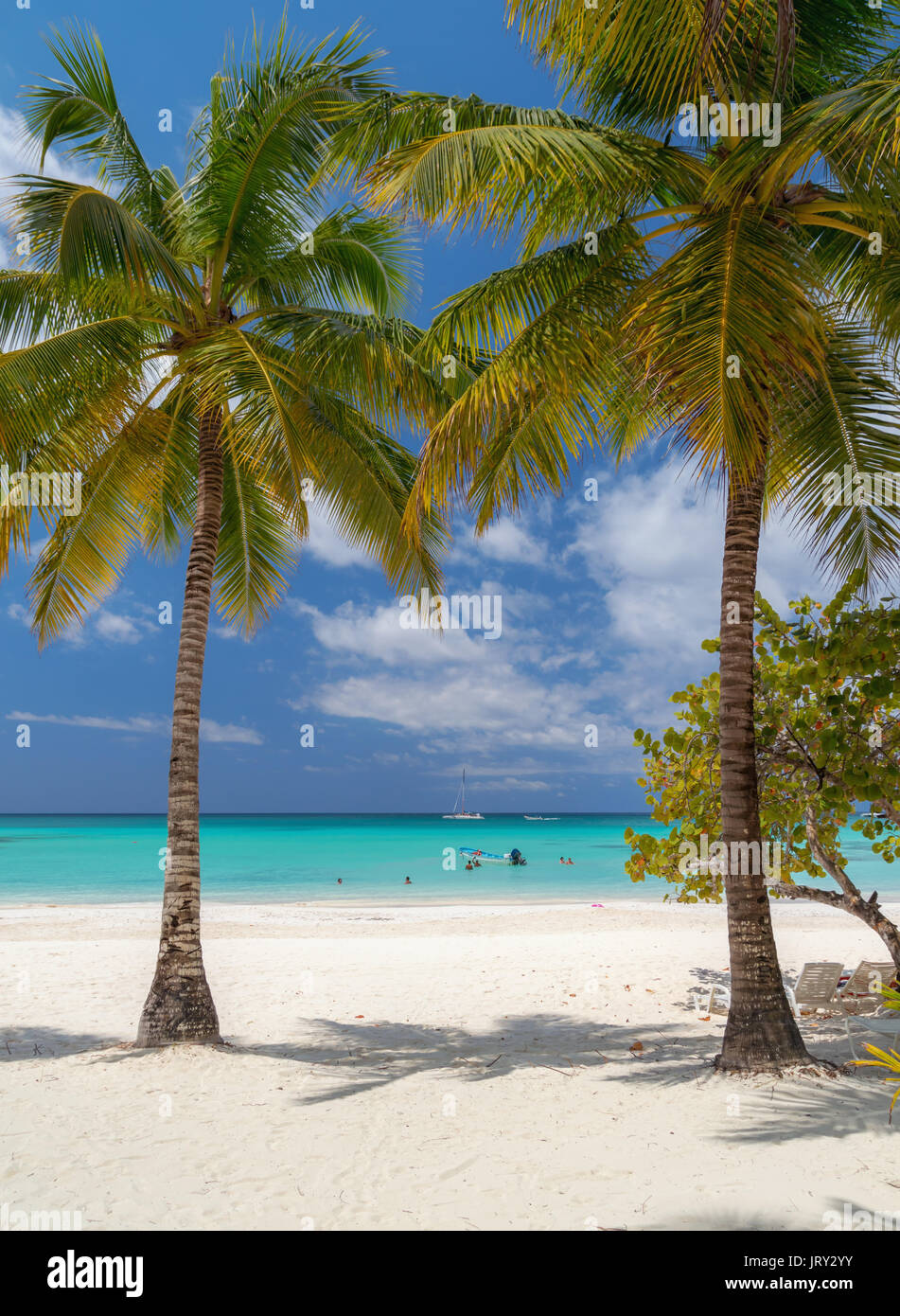 Passenger boats moored at the shore of the Dominican island of Saona. - Stock Image