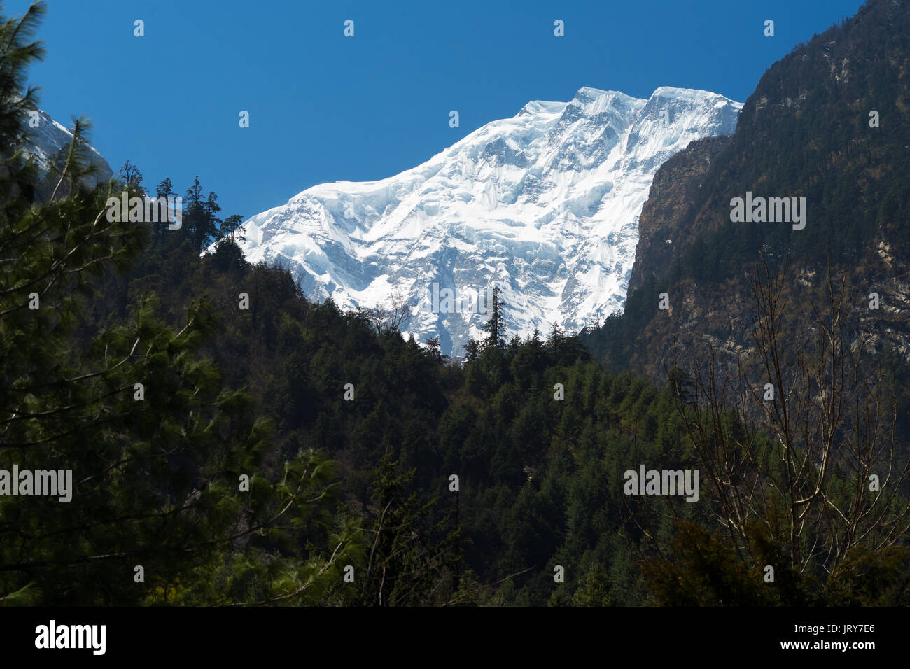 Lamjung Himal seen from Chame, Annapurna region, Nepal. - Stock Image