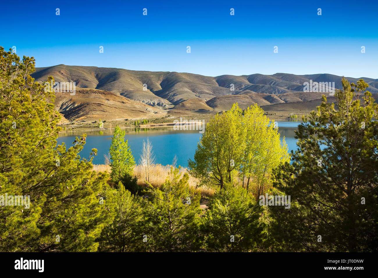 Blue water lake and vegetation. High Atlas. Morocco, Maghreb North Africa - Stock Image