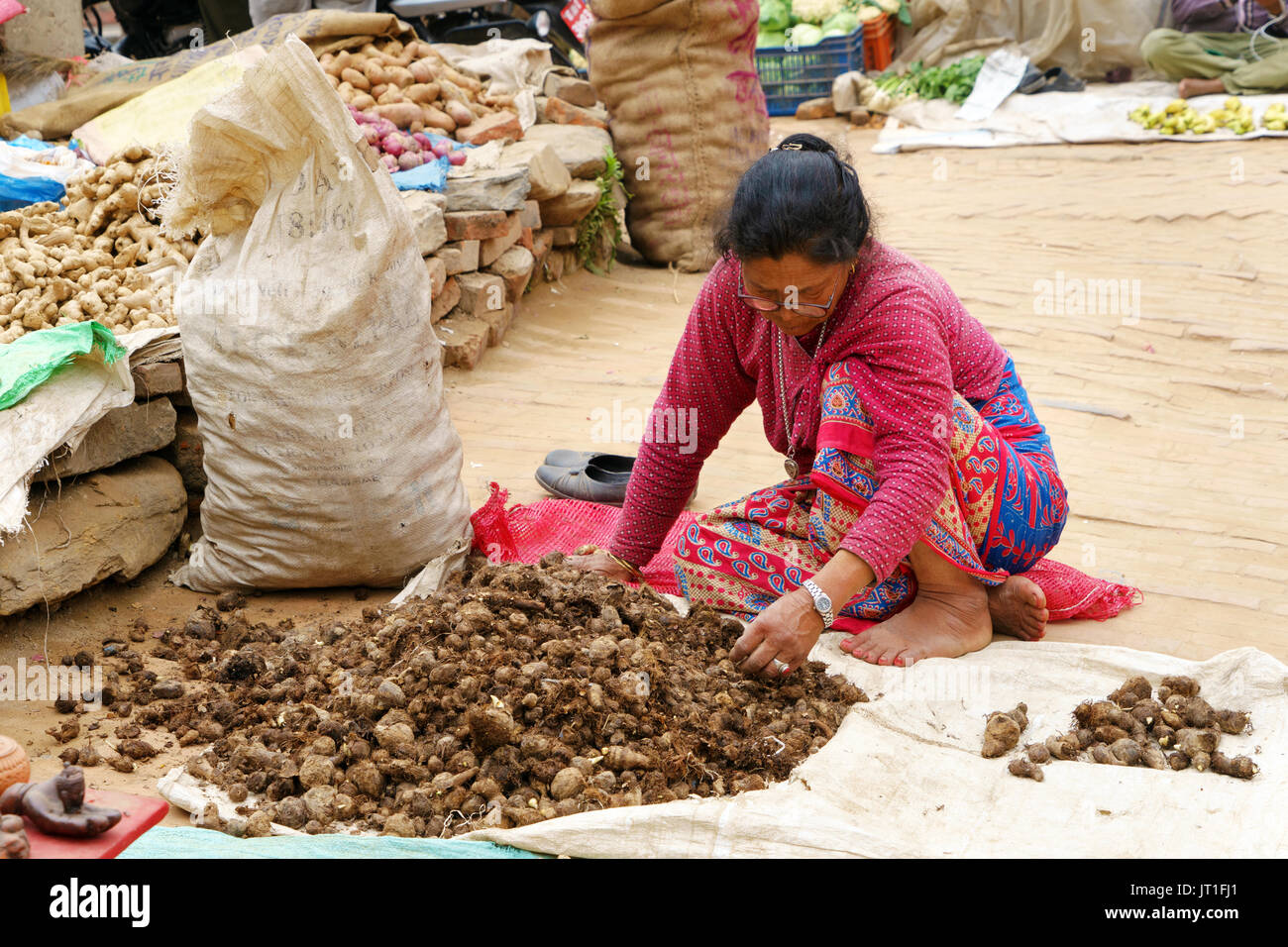 Nepalese woman sorting taro roots in an exterior market, Bhaktapur. - Stock Image