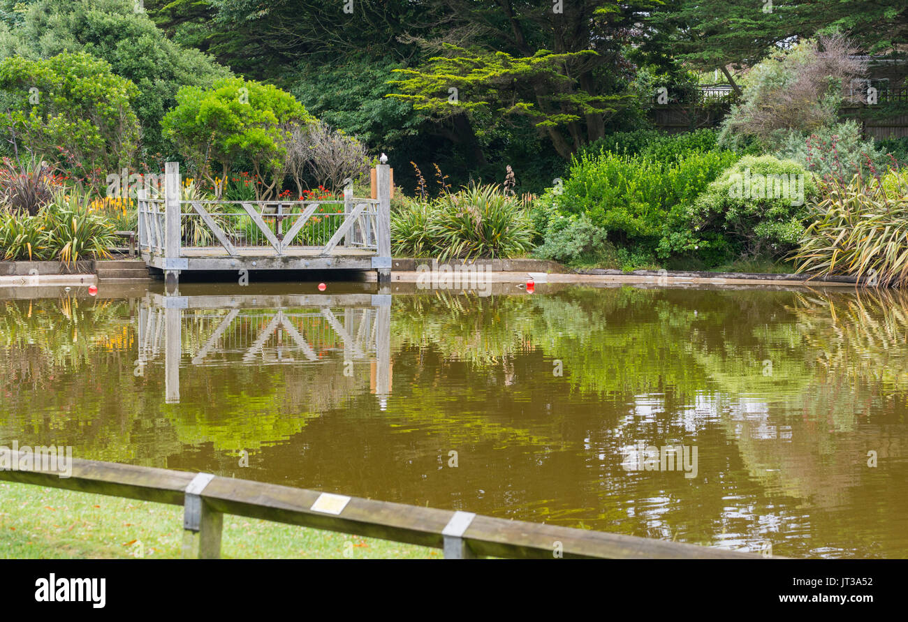 Brown discoloured water in Mewsbrook Park lake in Littlehampton, West Sussex, UK, during hot Summer weather. Stock Photo