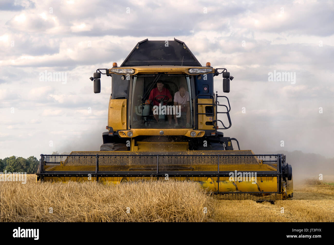 New Holland Combine Harvester at work harvesting wheat in rural Essex field - Stock Image