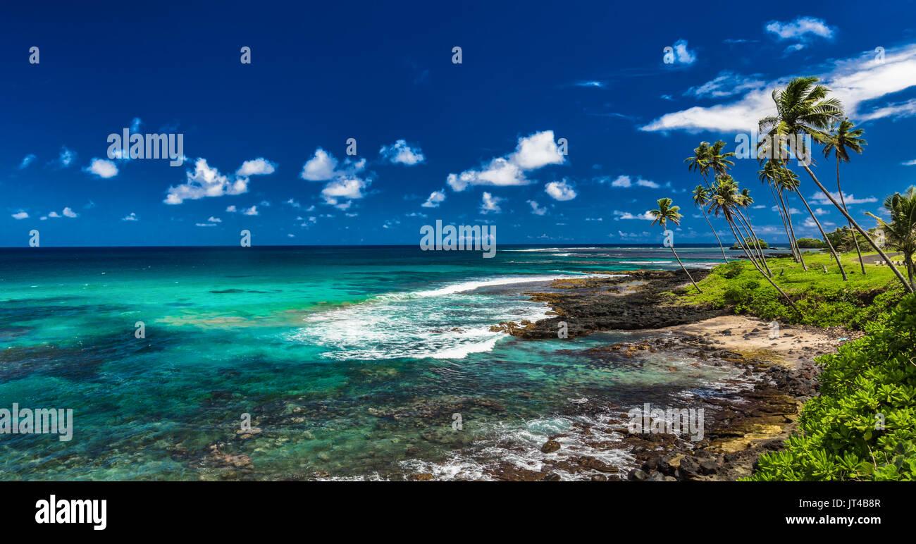 Tropical volcanic beach on Samoa Islands with many palm trees, Upolu - Stock Image