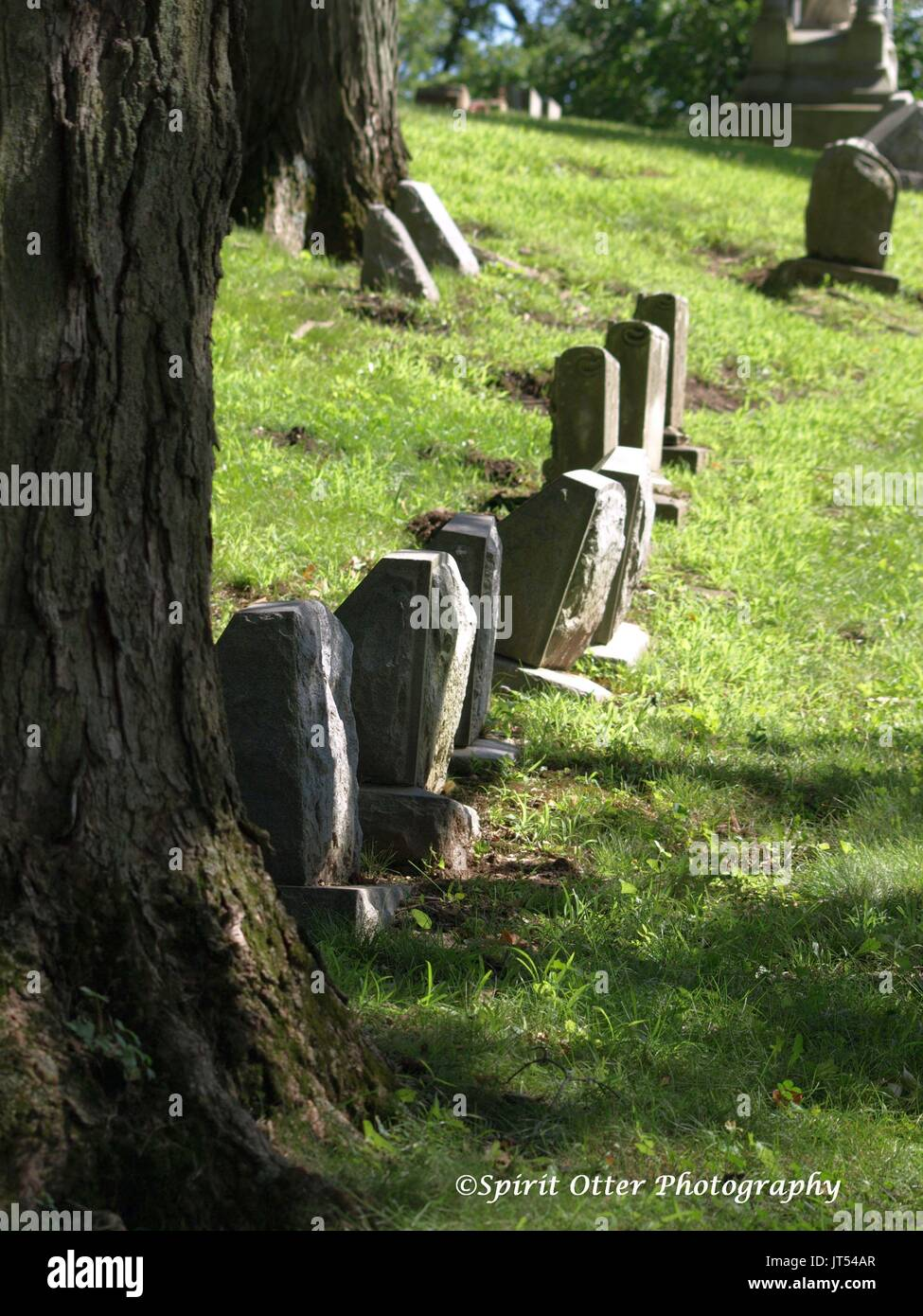 An older peaceful resting place of the dead, no names shown - Stock Image