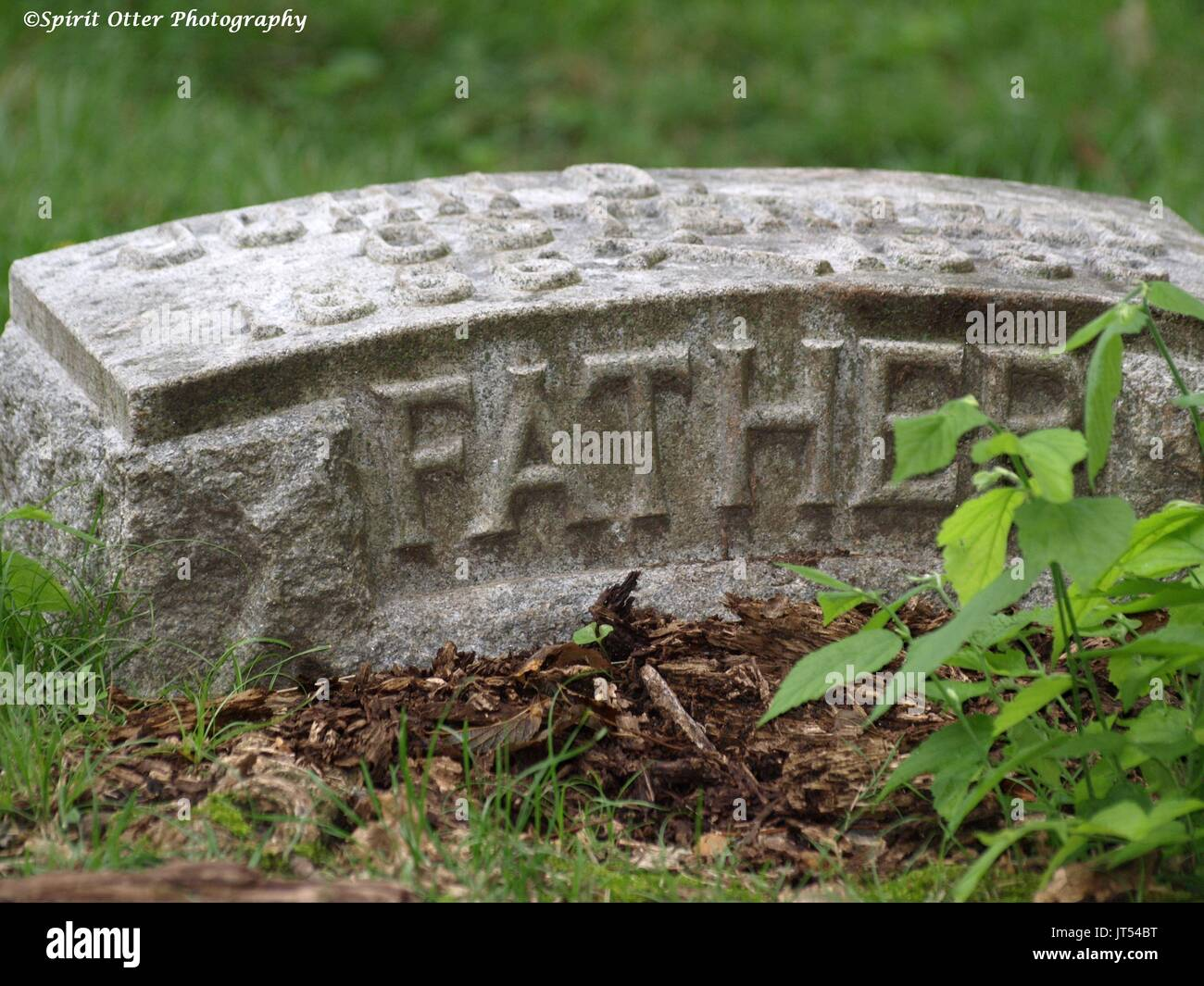 A headstone marker of a loved father, no name shown - Stock Image