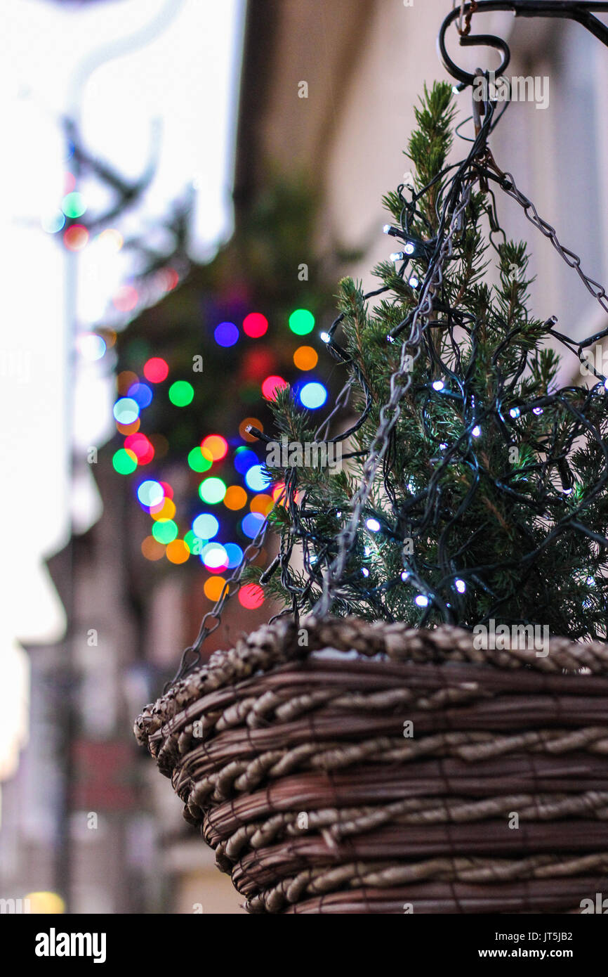 Christmas Hanging Baskets With Lights.Hanging Basket With Christmas Lights Bokeh In Background