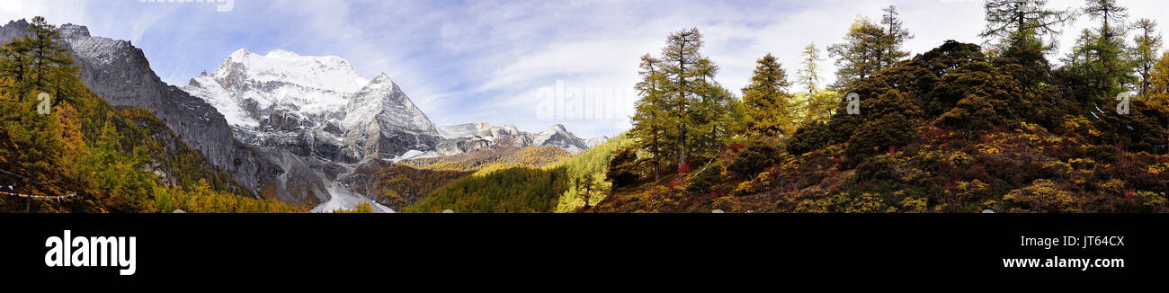 Shangri la, a panorama view of holy snow-clad mountain Chenrezig and yellow orange colored autumn trees in the valley in Yading national level reserve - Stock Image