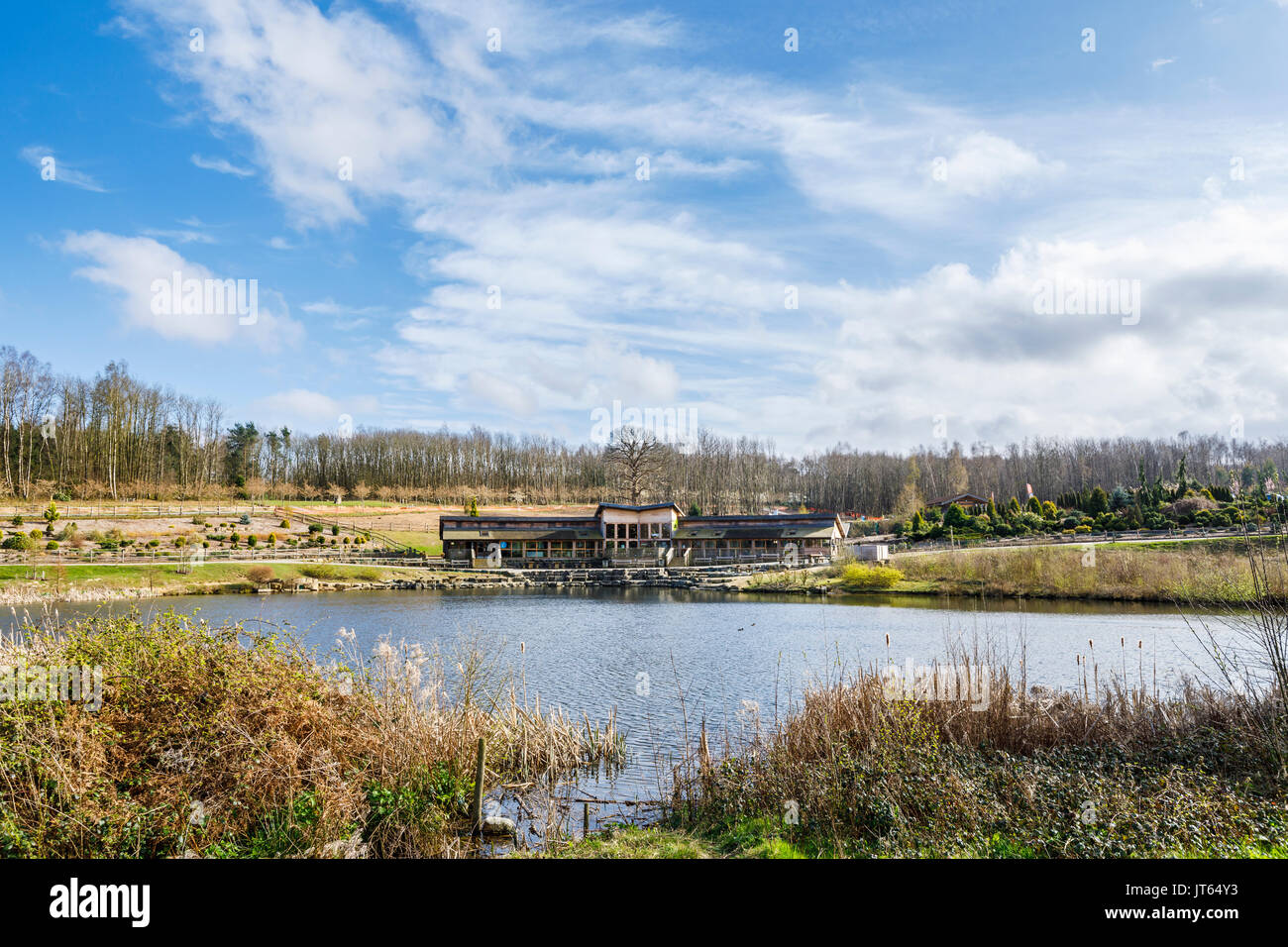 Bedgebury National Pinetum lake, cafe and visitor centre, Bedgebury, Kent, south-east England in spring - Stock Image