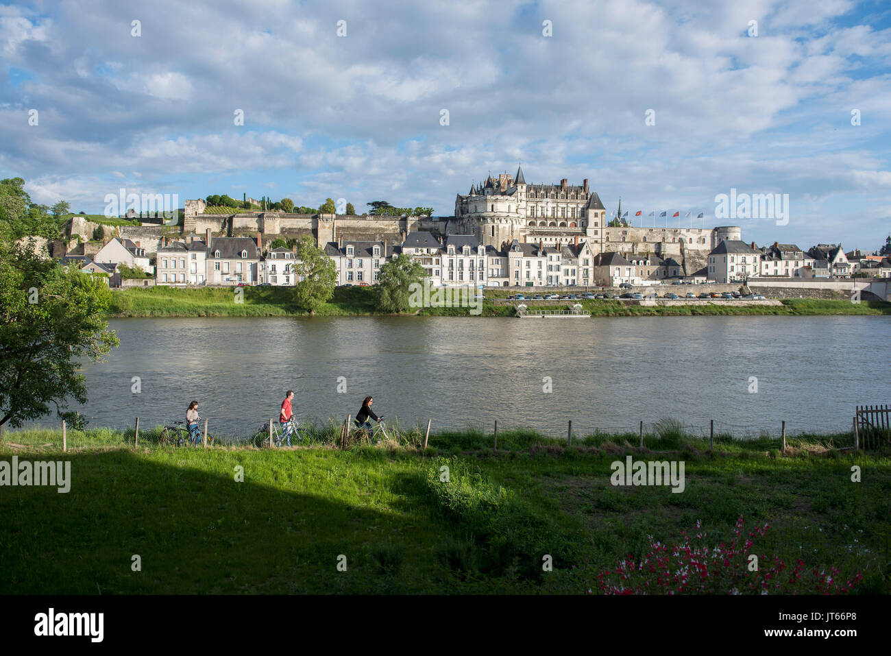 Amboise (central France): the River Loire, the city and the castle.  The Chateau d'Amboise belongs to the castles Stock Photo