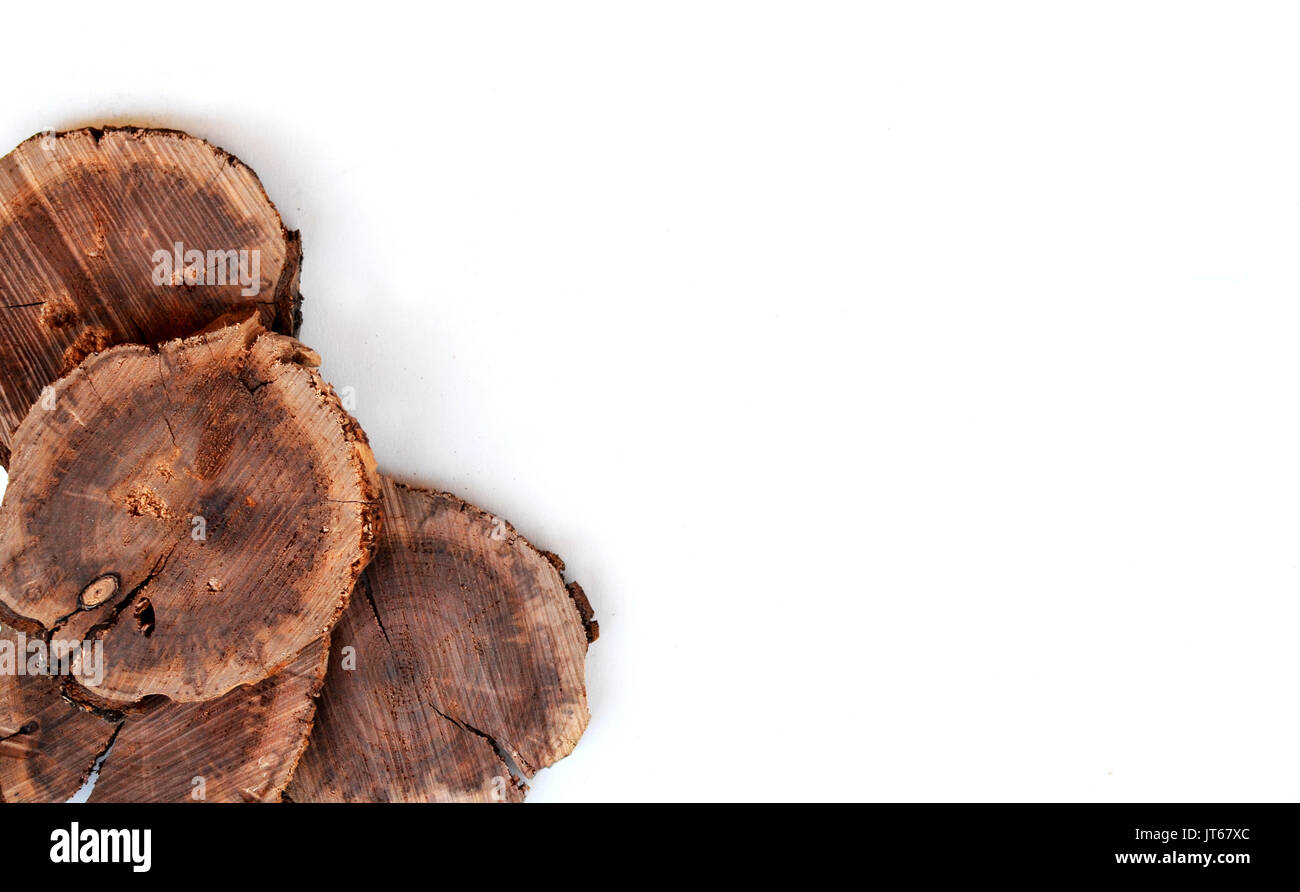 Wood slices from tree show organic texture on isolated white background.  Great for environment or wood working Stock Photo