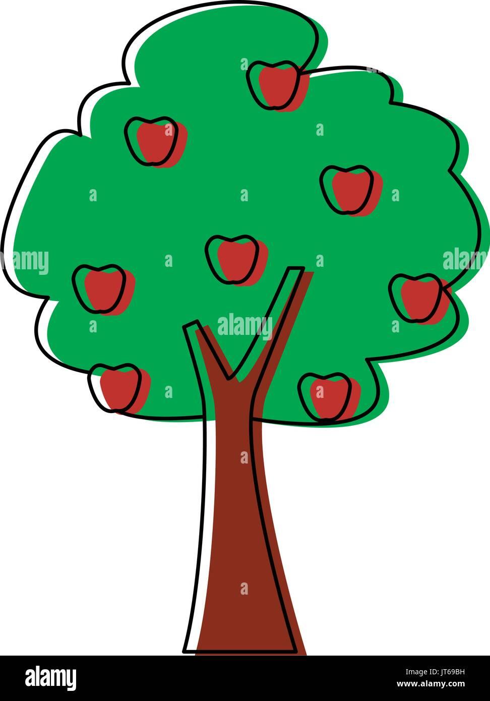 tree fruit botanical nature forest ecology - Stock Vector