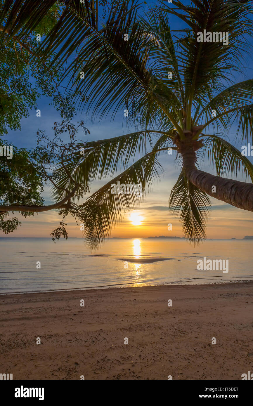 Palm tree silhouette during a colorful tropical sunset at Nathon beach, Laem Yai, Koh Samui, Thailand - Stock Image