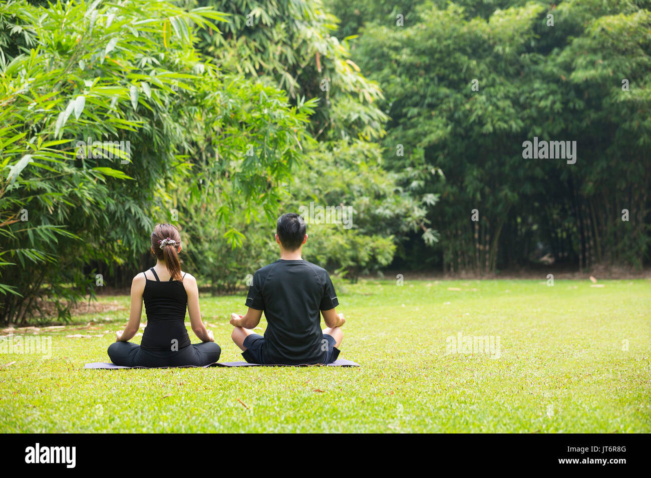 Asian Man and woman doing Tai Chi in a garden. Healthy lifestyle and ...