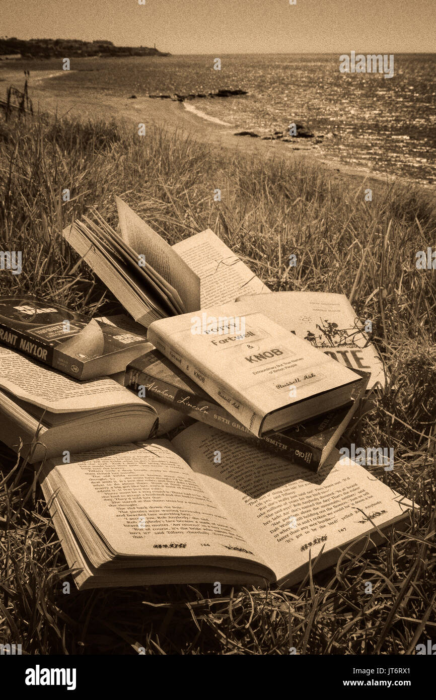 Lots of books at the beach. Costa del Sol, Málaga province. Andalusia, Southern Spain Europe Stock Photo