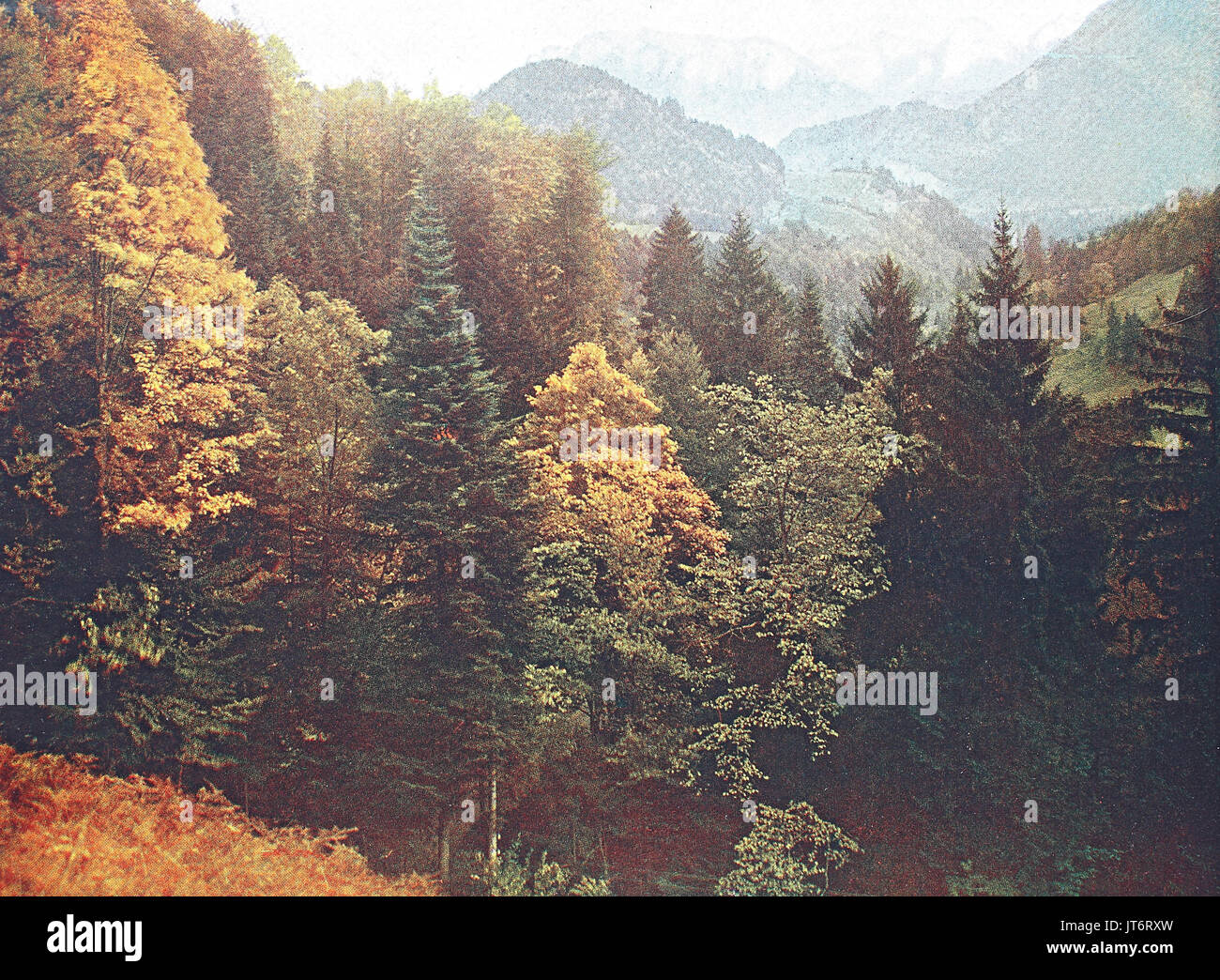 Historical photo of the alps region Tatzelwurm, Bavaria, Germany, Digital improved reproduction of an image published between 1880 - 1885 - Stock Image