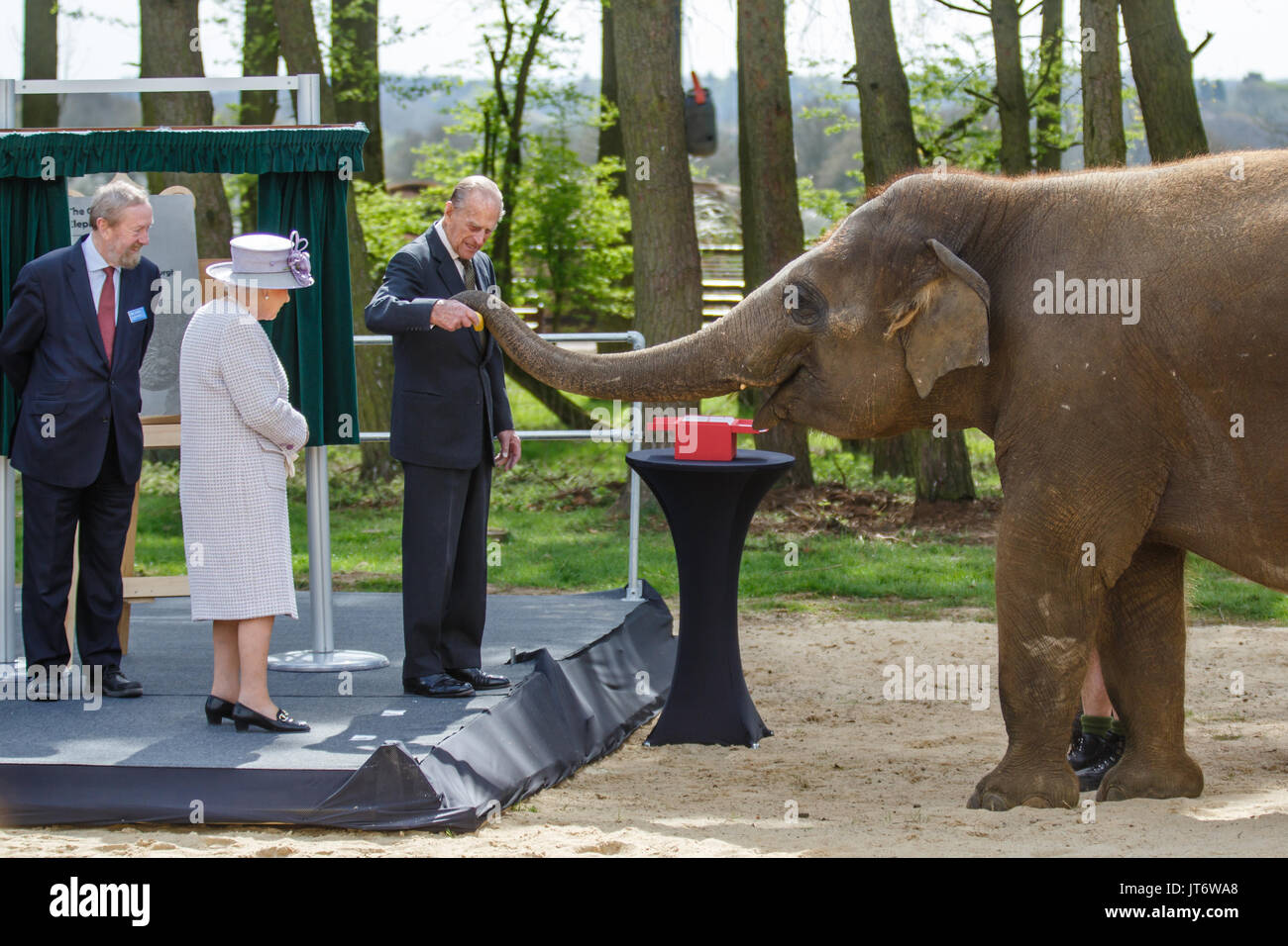 The Queen Helps Feed Elephants at Whipsnade Zoo