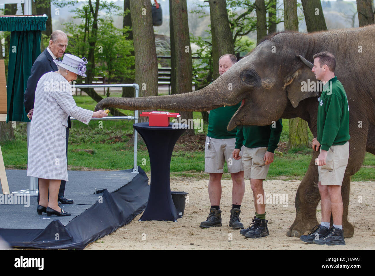 Watch The Queen Helps Feed Elephants at Whipsnade Zoo video